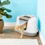 Chewy Frisco Flip Top Hooded Corner Cat Litter Box