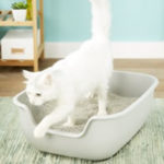 PetFusion BetterBox Non-Stick Cat Litter
