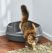 Chewy - Frisco Corner Sifting Cat Litter Box