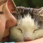 Why Do Cats Get In Your Face While You Sleep
