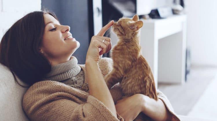 Can Cat Urine Cause Headaches